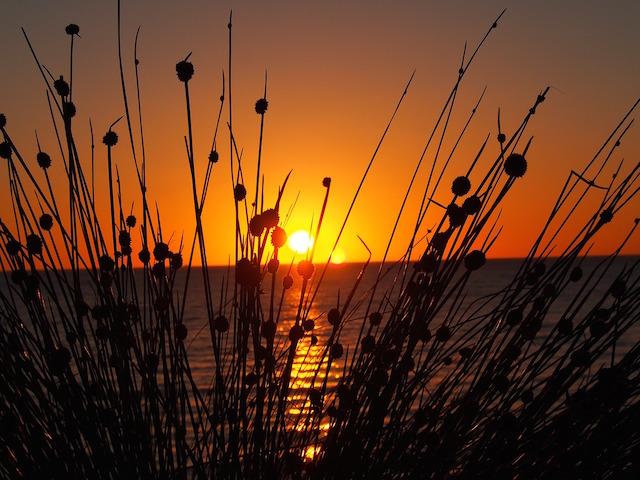 Sunset / Rise 11